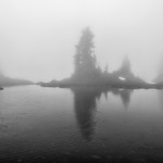 Trees and Tarns thumbnail