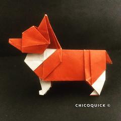 Origami Time! Corgi by Steven Casey 29/52 #おりがみ #夏 #Origami #Paper #Foldedbyme #Foldoftheday #Instaorigami #Summer #Sunday #Jul #21 #2019 #ElParaiso #Caracas #Venezuela #犬 #日本 #中國 #대한민국 #Uk #Deutsche #Россия #Ελλάς #française #chicoquick (chicoquick) Tags: おりがみ 夏 origami paper foldedbyme foldoftheday instaorigami summer sunday jul 21 2019 elparaiso caracas venezuela 犬 日本 中國 대한민국 uk deutsche россия ελλάσ française chicoquick