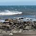 Windblown Surf