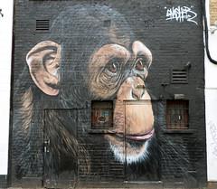 Chimp Art- Camden Town,  London (Rick & Bart) Tags: streetart graffiti art buckstreet london uk city urban camdentown rickvink rickbart canon eos70d chimpansee