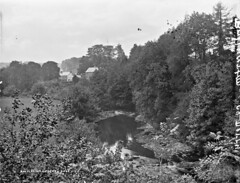 Spectacular scenic sylvan situation. (National Library of Ireland on The Commons) Tags: robertfrench williamlawrence lawrencecollection lawrencephotographicstudio thelawrencephotographcollection glassnegative nationallibraryofireland ulster derry ballyartan claudy scene ballyarton