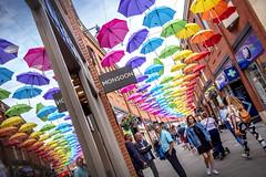 Umbrella Street, Durham (DM Allan) Tags: durham umbrella princebishops shopping art installation colour