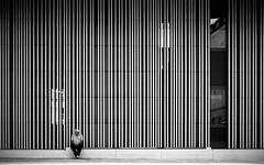 Vertical (Sven Hein) Tags: mann menschen leute strasse sommer schwarzweiss strassenfotografie vertical man people street streetlife summer bw blackandwhite candid streetphotography olympus penf