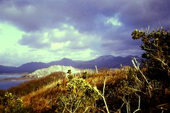 Snowdonia from near Porthmadog. (margaretgeatches) Tags: 1970's snowdonia mountains moelwynrange clouds blue water estuary quarry hedge driedgrass fence gorse filmcamera canonet28 kodachrome transparency film