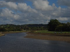 Photo of Afternoon on The Taw