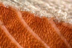 jump (LoomahPix) Tags: 11 d750 england flickr macromondays nikon uk closeup fish food gonefishing macro macrophotography salmon velbon