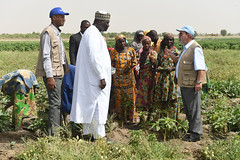 24874_1146 (FAO News) Tags: maiduguri nigeria fao africa travels