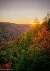 Sunset at Blackwater Canyon (KRHphotos) Tags: hdr westvirginia landscape sunset nature blackwaterfallsstatepark fallcolors forest canyon davis unitedstatesofamerica