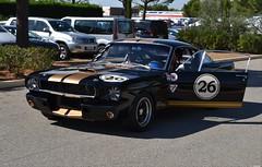 FORD Mustang Coupé Shelby GT350 - 1965 (SASSAchris) Tags: ford mustang coupé shelby gt350 carroll voiture américaine 10000 10000toursducastellet tours castellet circuit ricard httt htttcircuitpaulricard htttcircuitducastellet