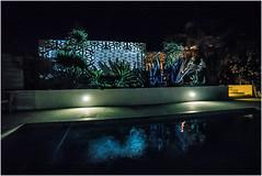 yellow stairs in a crete summer night (genelabo) Tags: aloe vera kaktus palm cactus karpoúzi villa pool swimmingpool reflection blue blau pattern muster greek kreta krete madmapper projektion projection outdoor summer kamilari καμηλάρι κρήτη greece griechenland visuals night nacht orleander cretevilla4nature karpousi crete