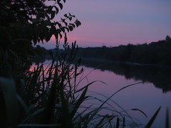 River Lippe (ClementainPhoto) Tags: river dusk water purple green plants morning mirror lippe germany sky hamm