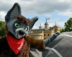 Londonfurs Summer 2019 352 (finbarzapek / SeanC) Tags: londonfurs summer weekender july 2019 fursuit fursuits furry furries animal costumes london united kingdom