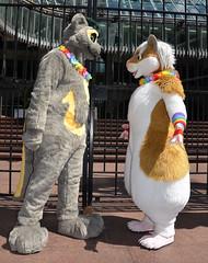 Londonfurs Summer 2019 209 (finbarzapek / SeanC) Tags: londonfurs summer weekender july 2019 fursuit fursuits furry furries animal costumes london united kingdom