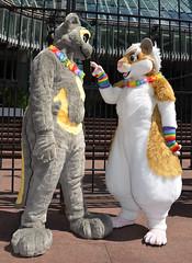 Londonfurs Summer 2019 208 (finbarzapek / SeanC) Tags: londonfurs summer weekender july 2019 fursuit fursuits furry furries animal costumes london united kingdom