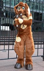 Londonfurs Summer 2019 167 (finbarzapek / SeanC) Tags: londonfurs summer weekender july 2019 fursuit fursuits furry furries animal costumes london united kingdom