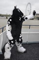Londonfurs Summer 2019 018 (finbarzapek / SeanC) Tags: londonfurs summer weekender july 2019 fursuit fursuits furry furries animal costumes london united kingdom