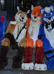 Londonfurs Summer 2019 466 (finbarzapek / SeanC) Tags: londonfurs summer weekender july 2019 fursuit fursuits furry furries animal costumes london united kingdom