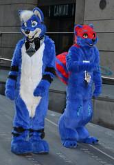Londonfurs Summer 2019 459 (finbarzapek / SeanC) Tags: londonfurs summer weekender july 2019 fursuit fursuits furry furries animal costumes london united kingdom