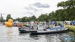 Henley Traditional Boat Festival 2019-6690 (Gary Harman) Tags: garyharman gary harman gh nikon pro henley traditional boat festival d850
