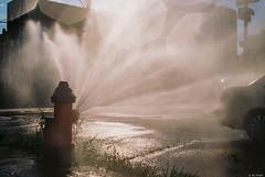 KD EKTAR 100 - 140 (kc_tinari) Tags: philadelphia philly kensington fishtown street streetphotography canon canoneos10s kodakektar100 film filmphotography 35mmfilm kodakfilm analogphotography