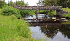 Glanteenassig (Circled Thrice) Tags: glanteenassig forest park dinglepeninsula dingle water stream creek river stonebridge bridge reflection green wooded canon eos rebel t3i sigma