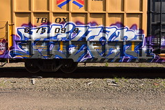 FIXER (TheGraffitiHunters) Tags: graffiti graff spray paint street art colorful benching benched freight train tracks boxcar fixer