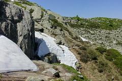 Snow blocking the trail @ Hike to Montenvers @ Grand Balcon Nord @ Chamonix (*_*) Tags: afternoon june summer ete 2019 montblanc chamonix europe france hautesavoie 74 savoie hiking sunny mountain montagne nature randonnee trail sentier walk marche grandbalconnord