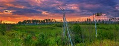 Sunset (rgbshot72) Tags: outdoors noman travel clouds sky scenics valley moodysky dramaticsky horizonoverland idyllic green blue tree trees forest landscape nature