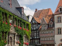 Quedlinburg, Germany (802701) Tags: 2016 201607 43 aatw aatw2016 em5 europe germany july july2016 mft micro43 omd omdem5 olympus olympusomdem5 quedlinburg saxonyanhalt fourthirds microfourthirds mirrorless travel travelling trips