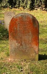 Ada Red, Culbone (leavesandpuddles) Tags: lichen somerset southwestcoastpath culbone gravestone graveyard memorial adared patination bryophytes porlock exmoor patina