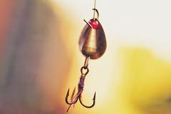 I'm Hooked (orbed) Tags: veryquickshotwhenigothomefromwork bokeh light fishing gonefishing macromonday's hook lure garden summer sun spinner barb sharp fish