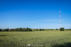 Amplia cobertura (SantiMB.Photos) Tags: 2blog 2tumblr 2ig gallecs mollet vallèsoccidental vallès primavera spring trigo wheat campo field rural antena antenna paisaje lansdcape geo:lat=4156266880 geo:lon=219468060 geotagged molletdelvalles cataluna españa