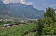 EU43 002 (MattiaDeambrogio) Tags: eu43 rtc rail traction company zebrata blu avio brennero brenner trento brennerbahn vigneti