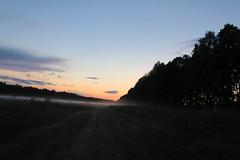 Вечерний туман (elgorka637) Tags: лето туман вечер