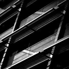 Black Swans (philippe baumgart) Tags: strasbourg alsace architecture elsass street urbain urban