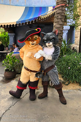 Puss in Boots and Kitty Softpaws (Disney Dan) Tags: universalsislandsofadventure orlando dreamworks june northamerica kittysoftpaws characters summer travel usa pussinboots 2019 universalorlandoresort florida america character dreamworksanimation dreamworkspictures fl ioa islandsofadventure juin othercharacters us unitedstates unitedstatesofamerica universal universalorlando