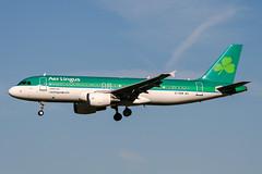 EI-DEM (PlanePixNase) Tags: amsterdam ams eham schiphol planespotting airport aircraft aerlingus airbus 320 a320