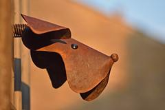 Metalhead (42jph) Tags: nikon d7200 uk england settle yorkshire dales metal dog head sculpture street art