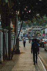 Kandy / Srilanka 2019