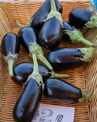 Eggplant (WayNet.org) Tags: vegetable waynet wayne county indiana jack elstro plaza richmond farmers market waynetorg eggplant farmersmarket jackelstroplaza waynecounty