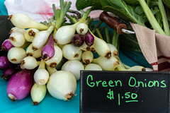 Green Onions (WayNet.org) Tags: vegetable waynet wayne county onions indiana jack elstro plaza richmond farmers market waynetorg farmersmarket jackelstroplaza waynecounty