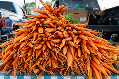HOL_9679.jpg (WayNet.org) Tags: vegetable waynet wayne county indiana jack elstro plaza carrots richmond farmers market waynetorg farmersmarket jackelstroplaza waynecounty