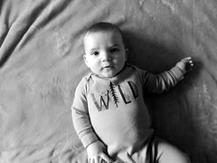 Wild (Kellseyk) Tags: baby babe tiny small newborn photograph portait black white cute adorable aww wild one young blanket infant child children nature natural