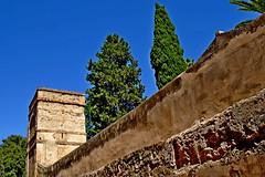 2019-05-31 Hiszpania - Sewilla (203) (aknad0) Tags: hiszpania sewilla miasto architektura mur drzewa