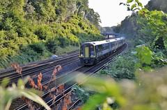 159009 (stavioni) Tags: swr south western railway dmu diesel multiple unit rail train express sprinter class159 brel british