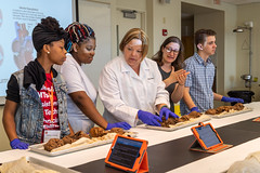 20190722_HCCE_MG_140 (RIT/NTID) Tags: cbt health learning ntid rit stem science careers doctor healthcare lab medical medicine nationaltechnicalinstituteforthedeaf rochesterinstituteoftechnology