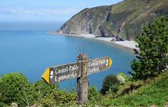 South West Coast Path to Lynmouth (Mark Wordy) Tags: southwestcoastpath devon lynmouth lynton walk porlock bristolchannel beach cliffs