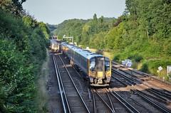 450029, 444033 (stavioni) Tags: class450 class444 swt swr south west trains western railway emu electric multiple unit rail train siemens desiro