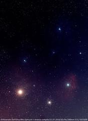 rho ophiuchi (achrntatrps) Tags: nébuleuse nebula nightshot d5300 nikon photographe photographer alexandredellolivo dellolivo lachauxdefonds suisse nuit night nacht achrntatrps achrnt atrps radon200226 radon etoiles stars sterne estrellas stelle astronomie astronomy nicht noche notte suivi astrophotographie eosforastro halpha nikkor70200mmf28g antares rhoophiuchi astrotrac320x