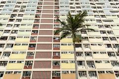 Urban Jungle Hong Kong (HutchSLR) Tags: hutchslr hongkong canon china chinese city cityscape canon5dmarkiii architecture apartment culture life